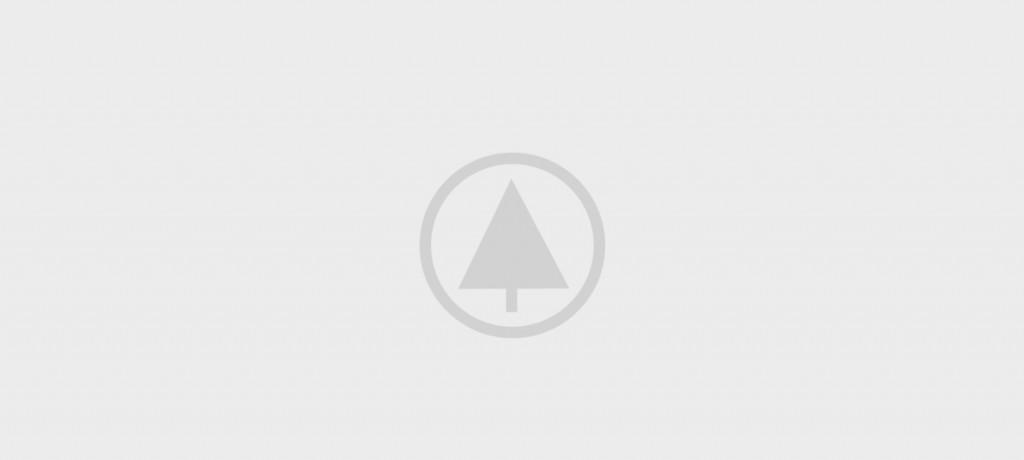 wood gallery placeholder 4 1024x460 - Non vestibulum lacus sociosqu