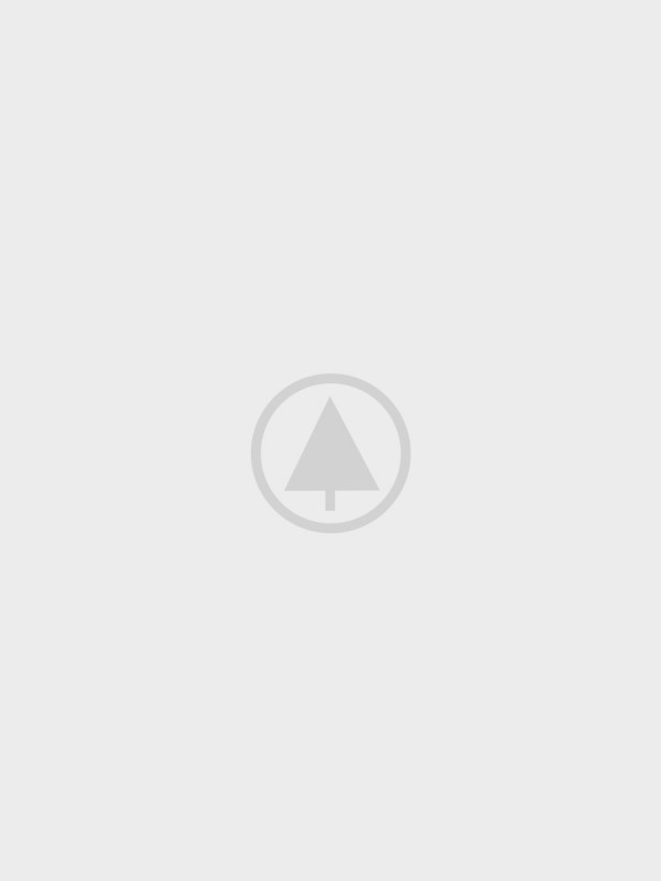 wood gallery placeholder 5 600x800 - Rhoncus quisque sollicitudin